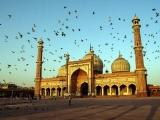 gallery_delhi_2