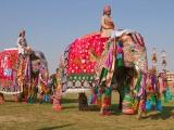 gallery_jodhpur_4